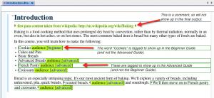 Inline_tagging_example_WYSIWYG